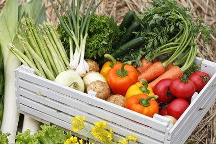 野菜ダイエットは生で効果的!【温めと酢漬けではどちらが酵素が多い?】