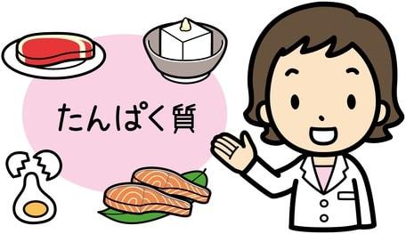 タンパク質を説明するイラスト