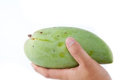 アフリカンマンゴー
