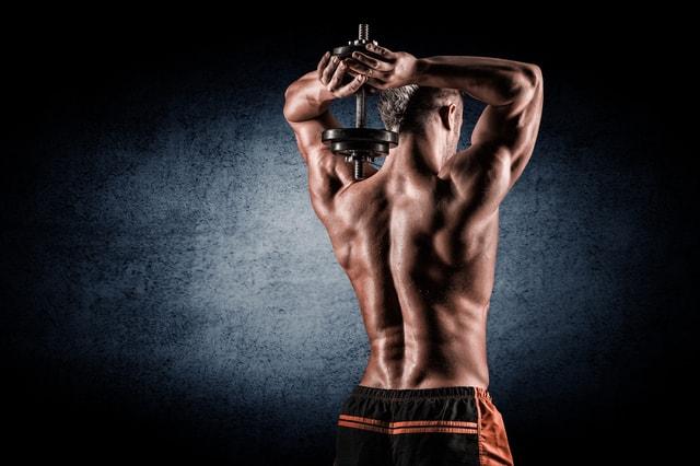 脊柱起立筋を鍛えて美しい背中を手に入れる!【効果的な2つのトレーニング法】